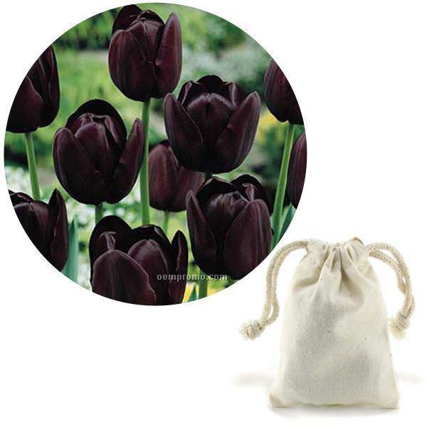 5 Tulip Bulbs In A Natural Cotton Bag With Custom 4-color Hang Tag