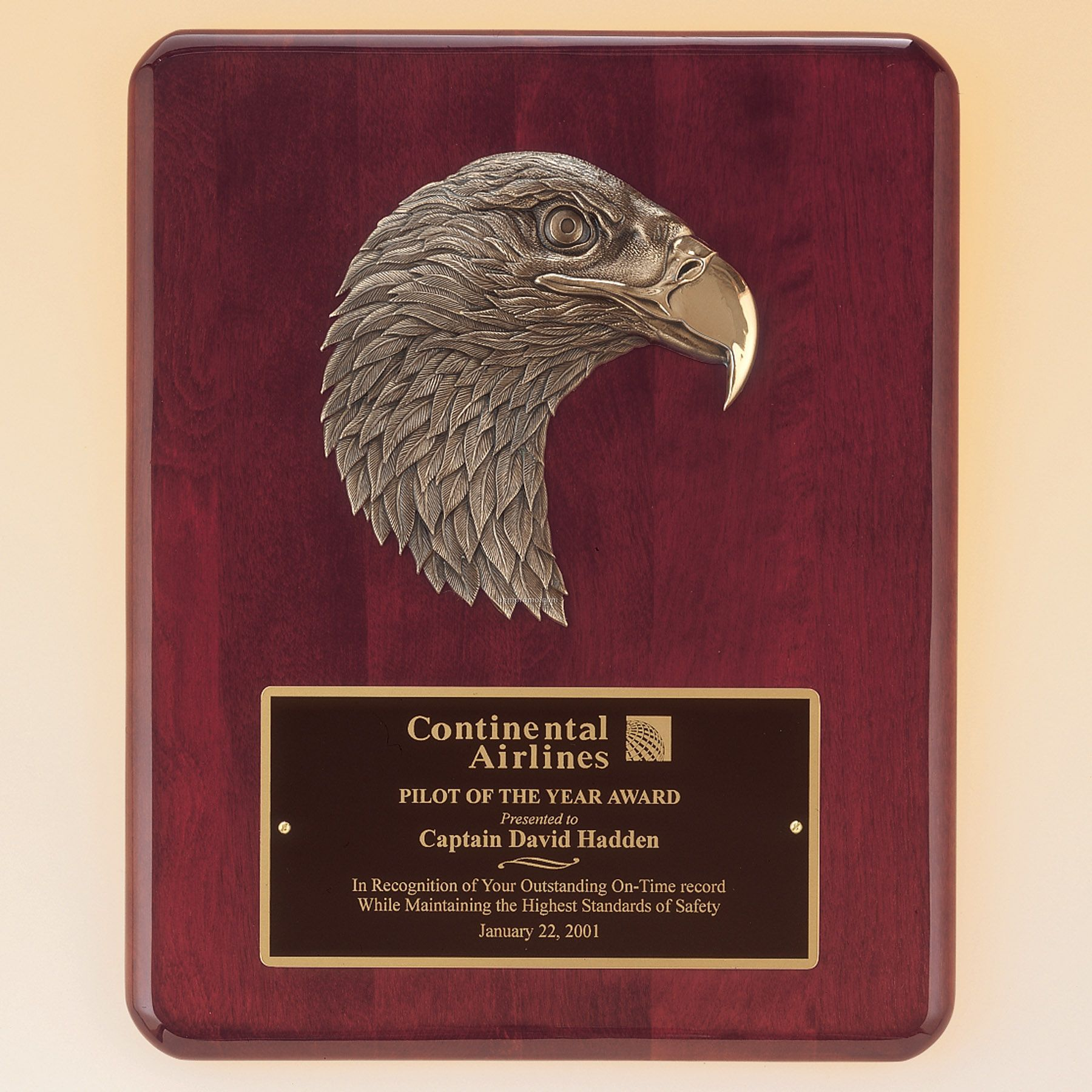 Finely Detailed Eagle Casting W/Antique Bronze Finish