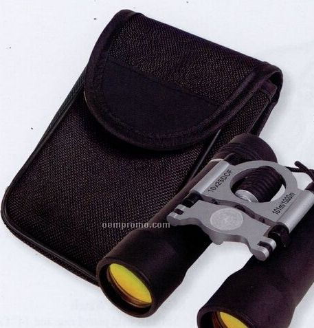 10x25 Binoculars With Black Nylon Carry Bag Silver