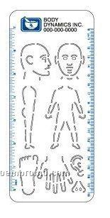 Medical Illustrator (Body)