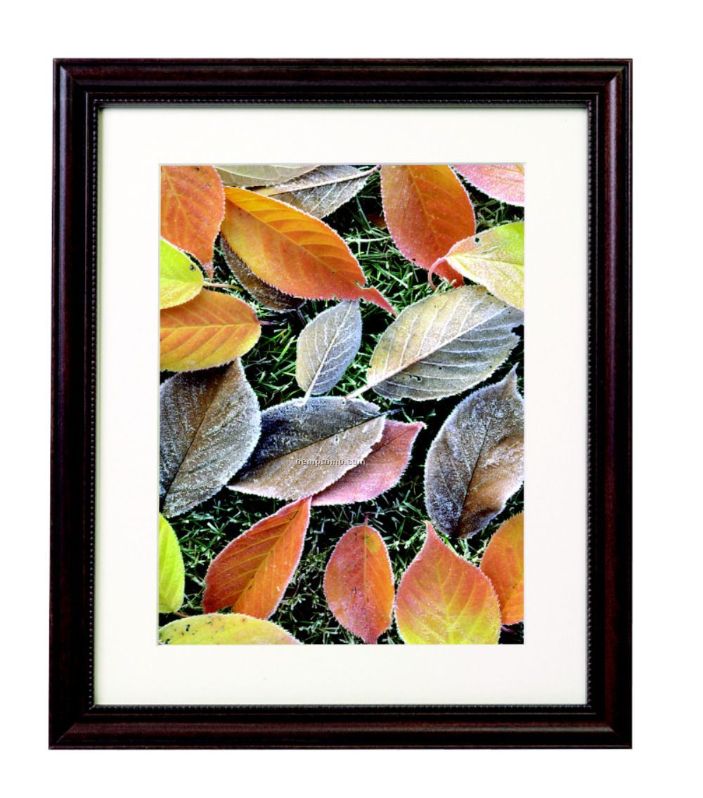 """Traditional Walnut Frame - Matted (11""""X14"""")"""