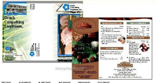 """11""""X17"""" Brochures Gloss Text (4 Color Front / 1 Color Back)"""