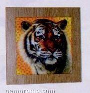 """6""""X6"""" Blank Undecorated Coated Ceramic Photo Tile"""