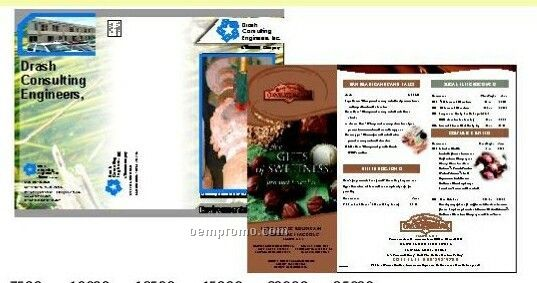 """11""""X17"""" Brochures Gloss Cover (4 Color Front / 1 Color Back)"""