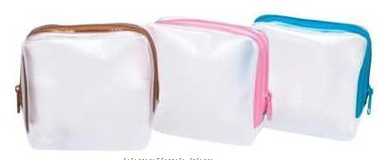 Frosted Accessory Pouch (Small)