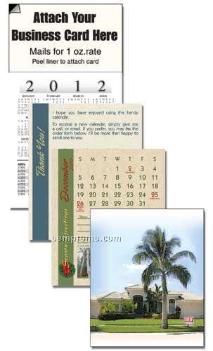 2011 Palm Tree Home Cover 13 Month Realtor Calendar