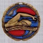 Stock Cem Medal - Swimming