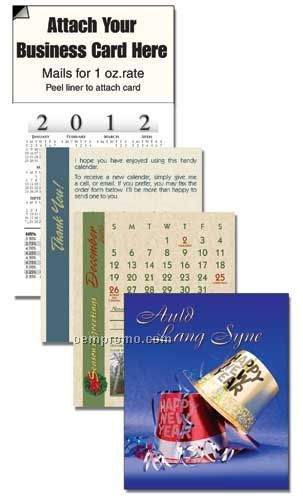 2011 New Year Cover 13 Month Realtor Calendar