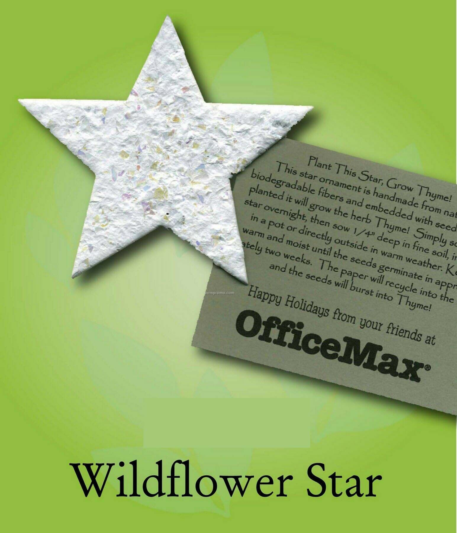 Wildflower Star Ornament With Embedded Seed
