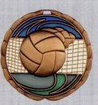 Stock Cem Medal - Volleyball