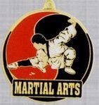 "2"" Color-filled Stock Medal - Martial Arts"