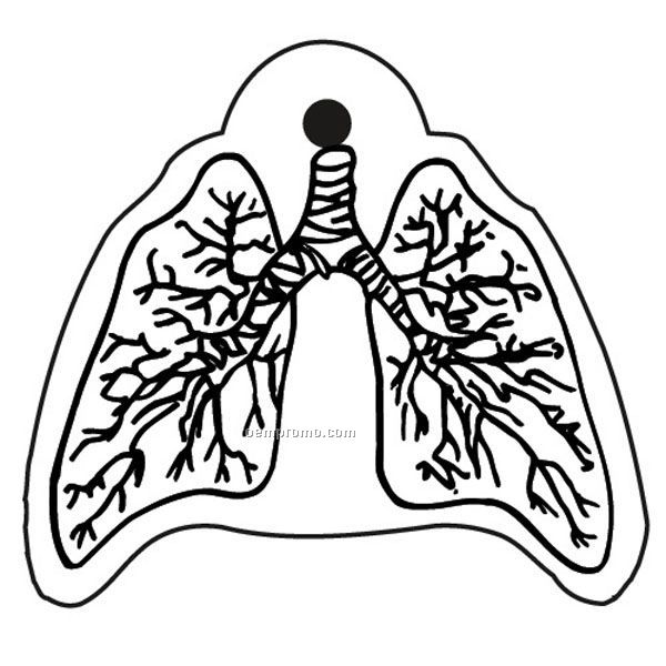 Stock Shape Collection Lungs Key Tag