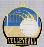 "2"" Color-filled Stock Medal - Volleyball"