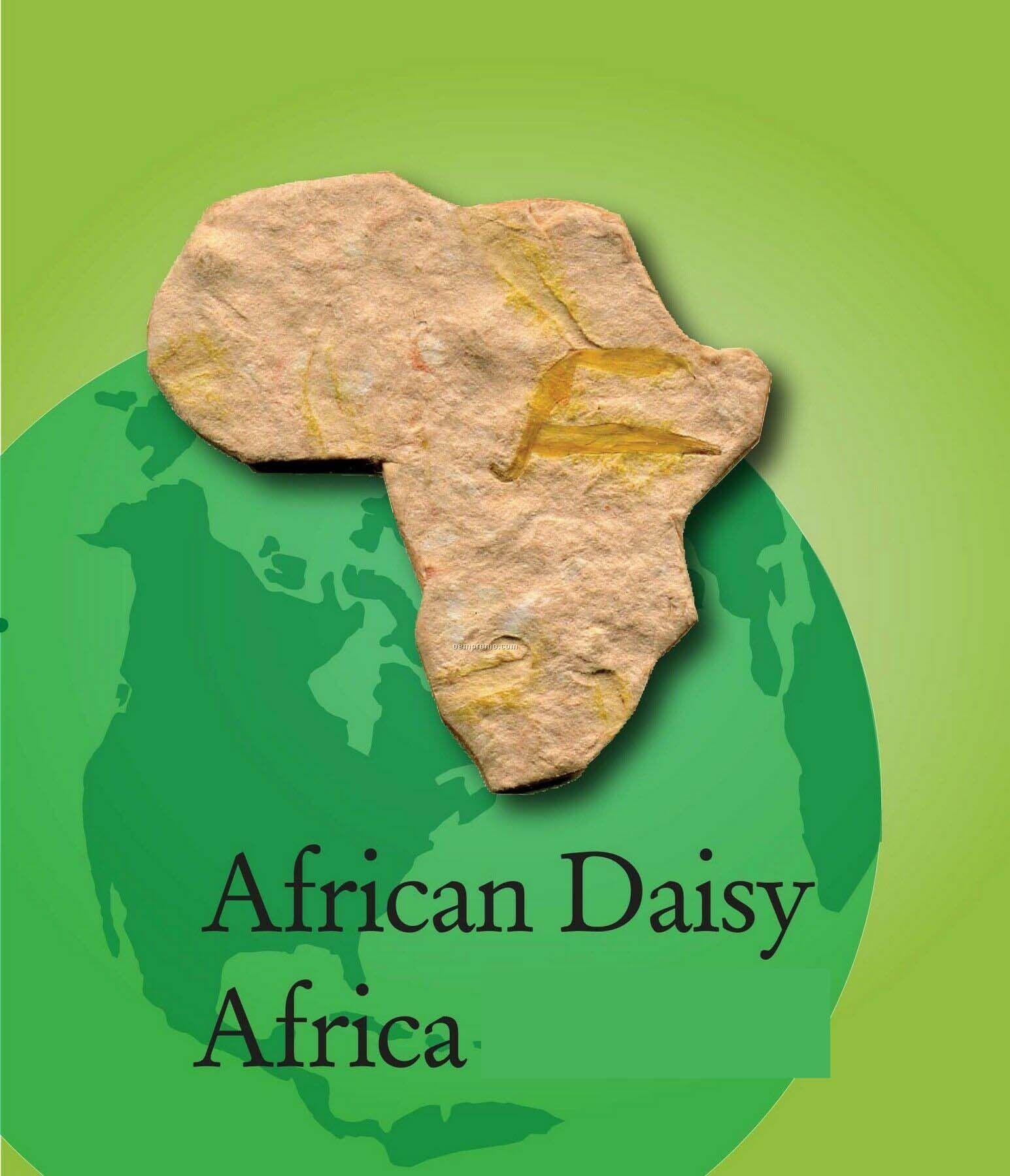 African Daisy Handmade Seed Plantable Mini