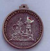 """Custom Cast Medallions / Coins (3"""")"""