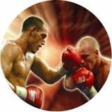 "Photo Mylar Insert - 2"" Boxing"