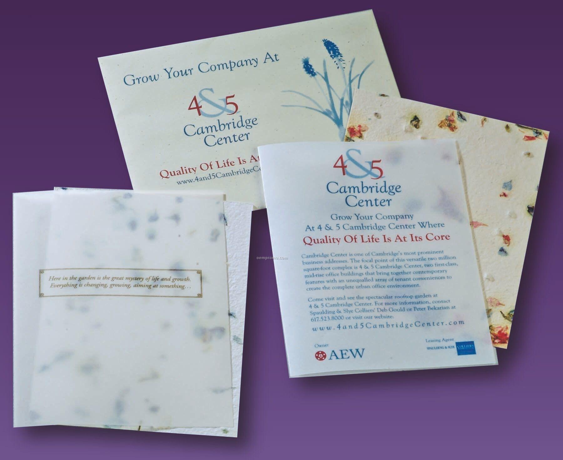 Symphony Blue Wildflower Seed Saver Card