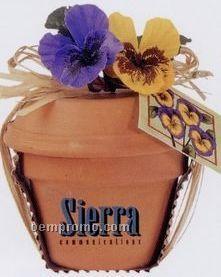 "Mini Plant Kit In 4"" Terra Cotta Pot (Pansy)"