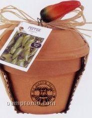"Mini Plant Kit In 4"" Terra Cotta Pot (Jalapeno Pepper)"