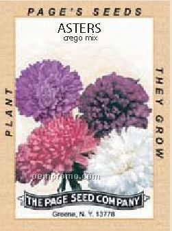 Antique Series Asters Flower Seeds