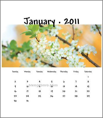 2011 Desk Jewel Case Calendar - Floral Delight