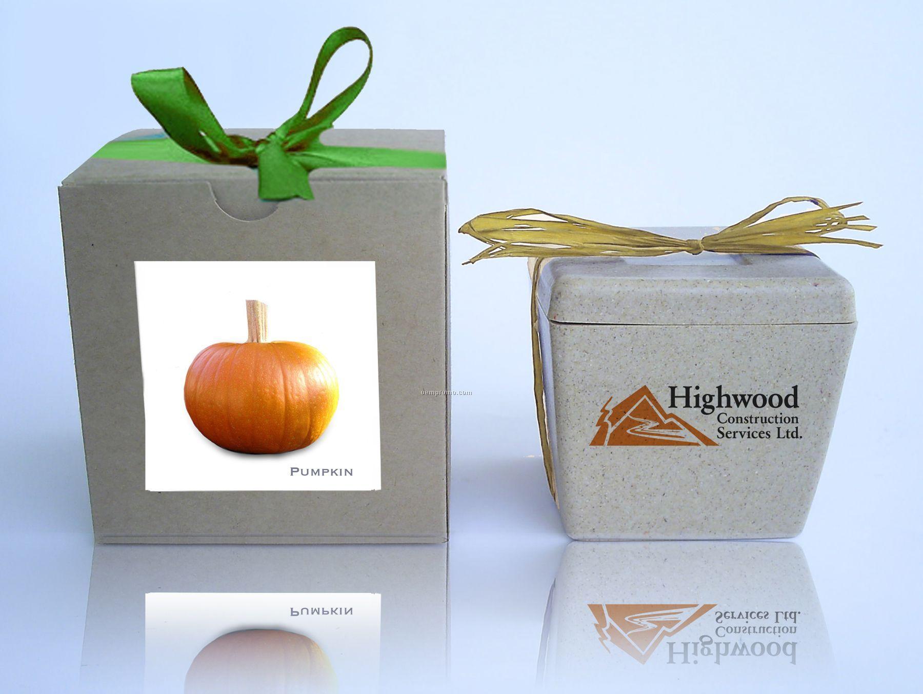 Pumpkin Cube Kit