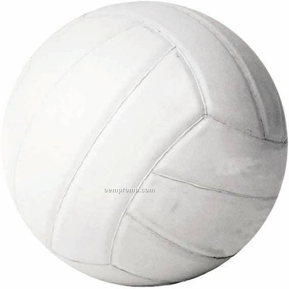 "Photo Mylar Insert - 2"" Volleyball"