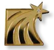 "Sandblast Plated Lapel Pin With Soft Enamel Color Fill (1 3/8"")"