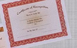 """8 1/2""""X11"""" Stock Deluxe Award Certificate - Recognition"""