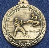 "2.5"" Stock Cast Medallion (Karate)"