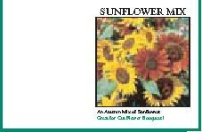 Impression Series Sunflower Mix Seeds