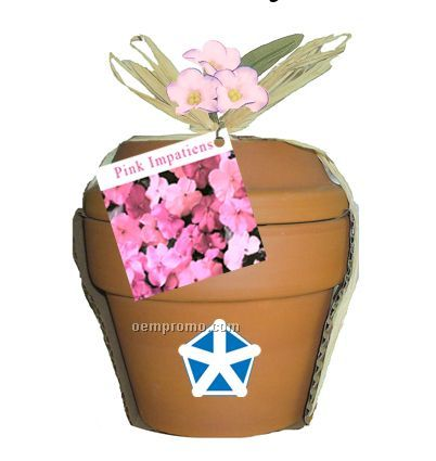 Deluxe Plant Kit With Pink Impatiens Seeds