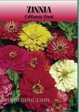 Standard Series Zinnia Seeds - 1 Color