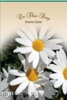 Stock Series Shasta Daisy Seeds - On This Day