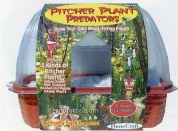 Pitcher Plant Predators Greenhouse