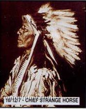 "11""X14"" Early American Tin Type Print - Chief Strange Horse"