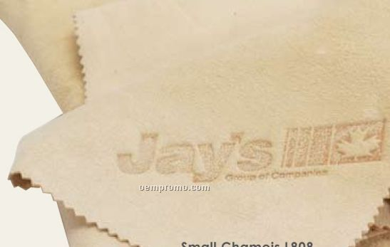 Small Genuine Leather Chamois