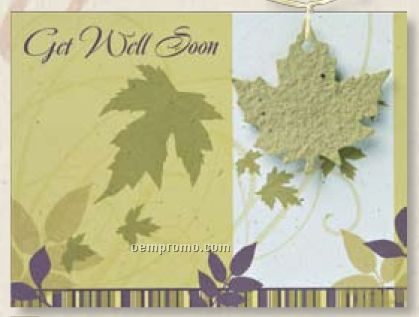 Get Well Card With Leaf Seed Decoration & Raffia Bow