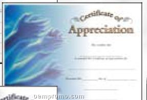 Appreciation Certificate (Certificate Only)