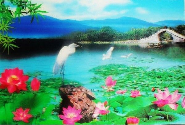 3d Lenticular Picture