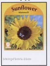 Mammoth Sunflower Stock Designs Seed Packets - Imprinted