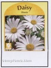 Shasta Daisy Stock Designs Seed Packets - Imprinted