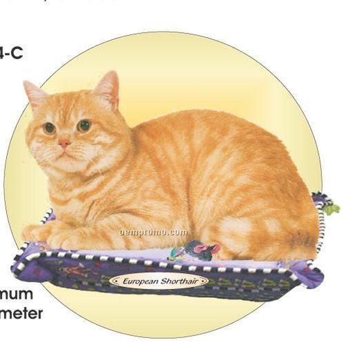 European Shorthair Cat Acrylic Coaster W/ Felt Back