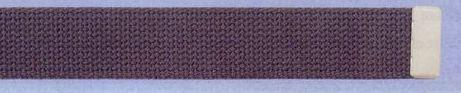 Plain Web Belt With Leather Tip (Olive)