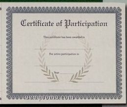 Stock Female Volleyball Antique Parchment Certificate