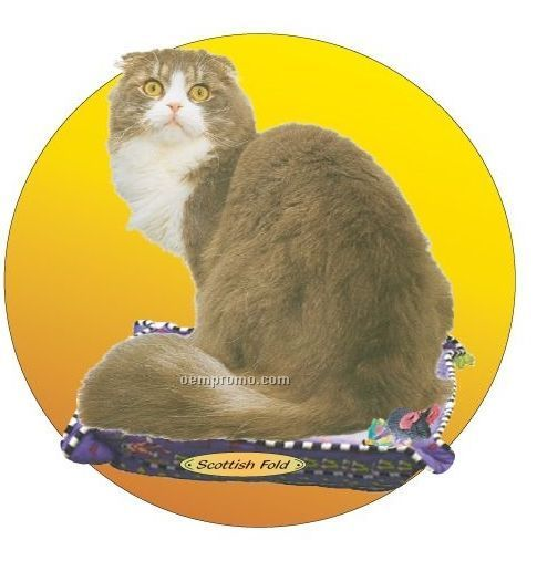 Scottish Fold Cat Acrylic Coaster W/ Felt Back