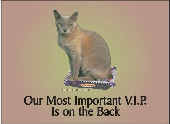 "Burmese Cat Rectangle Hand Mirror (2 1/2""X3 1/2"")"