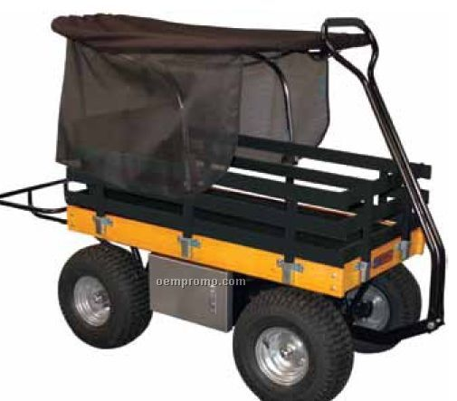 Wagon With Removable Side Rails & Canopy