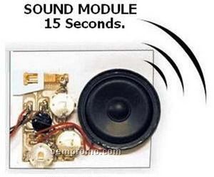 Sound Module W/Custom Message