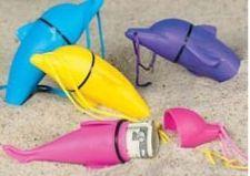 Dolphin Beach Safe
